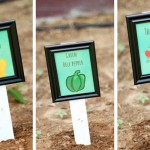 Vegetable Garden Markers Using Picture Frames