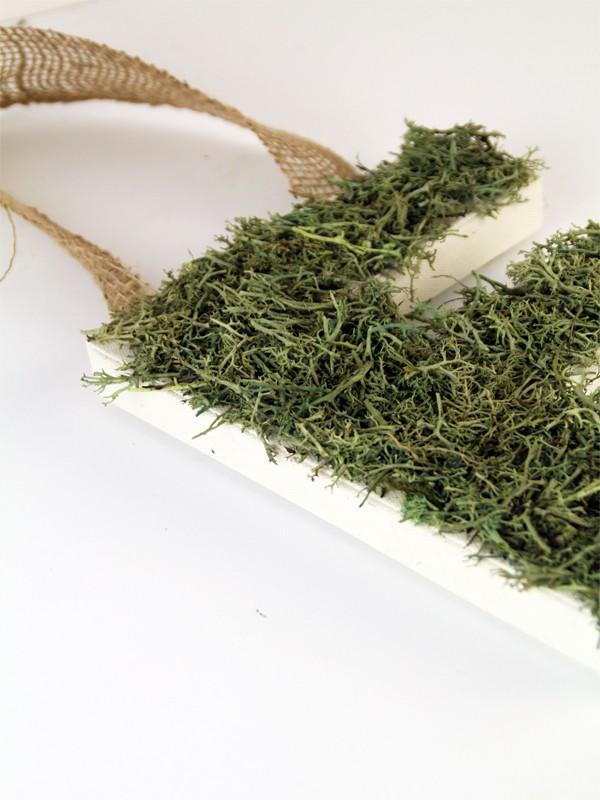 Moss Covered Monogram Letter Decor