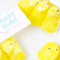 Peeps Easter Printable Gift Tag + {The Creative Corner 3.20.16}