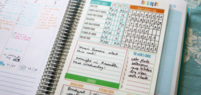 Laminated Daily Planner Insert