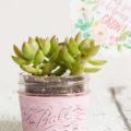 Mini Succulent Planter Gift Idea Plus FREE Printable Gift Tag