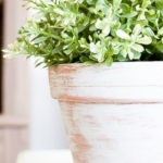 Vintage Farmhouse Style Terra Cotta Flower Pots